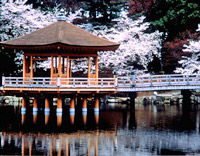 Kyoto and Nara Day Tour (From Osaka) - Golden Pavilion, Todaiji
