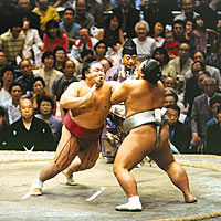 Sunrise Sumo Wrestling Tour - Tokyo Tournament