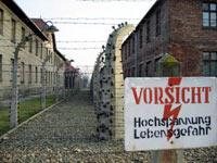 Half Day Tour to Auschwitz - Birkenau Museum - UNESCO World Heritage Site