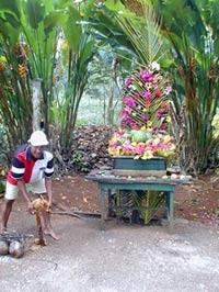 Croydon Plantation, Jamaica