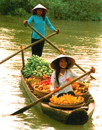 Mekong Delta at a Glimpse including Mekong River Cruise
