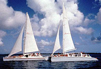 Grand Cayman Red Sail Sports Stingray City Afternoon Sail