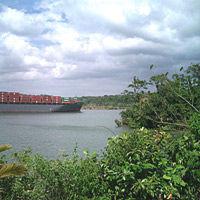 Ecotour: Gamboa Gatun Lake Boat Cruise