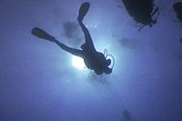 PADI Open Water Diver Puerto Plata