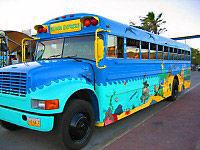 The Curacao Beach Express