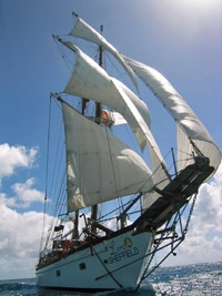 The Pirates of St Maarten Day Cruise