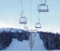 Lake Tahoe Ski Day Tour
