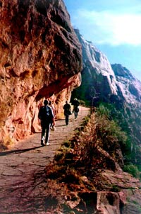 Zion Canyon 1 Day Adventure