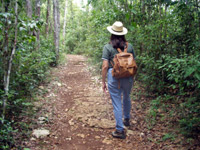 Hiking the Guajataca Forest