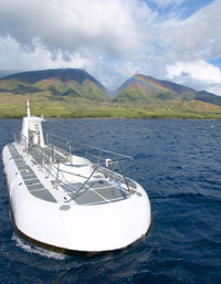 Maui Submarine Adventure plus Whale Watch Cruise