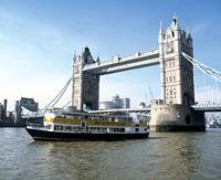 Thames River Circular Sightseeing Cruise
