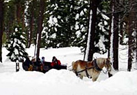 Sleigh Ride with Dinner
