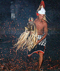 Evening Fire, Trance and Monkey Dance Private Tour