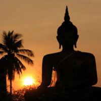 Lantau Island Tour including Giant Buddha at Po Lin Monastery