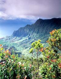 Hidden Valley Falls Kayak and Kauai Hike Adventure