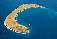 Maui Sunset Dinner Cruise and Molokini Snorkel Combo