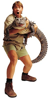 Steve Irwin, The Crocodile Hunter