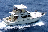 Deep Sea Fishing in San Juan aboard 'The Legend'