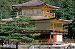 Kyoto Full-Day Sightseeing Tour including Nijo Castle and Kiyomizu Temple - $ 117