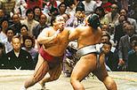 Tokyo Sumo Wrestling Tournament