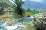 private 4x4 safari mountain fascination eastern hajar mountains in muscat 18264 World Tours 26