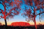 2 day uluru ayers rock camel farm and kata tjuta trip from alice in alice springs 39806 World Tours 34