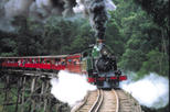Save 20%: Puffing Billy Steam Train, Yarra Valley and Healesville Wildlife Sanctuary Day Tour by Viator