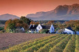 stellenbosch franschhoek and paarl valley wine tour