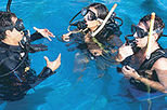 Learn to Dive - Beginner Resort Scuba Course