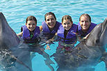 Family dolphin swim tours are very popular in Puerto Vallarta