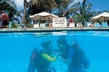 Introductory Diving in Aruba