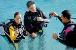 Introductory Scuba Dive in Puerto Plata