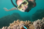 Outer Great Barrier Reef Dive and Snorkel Sailing Cruise from Palm Cove
