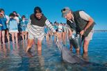 5-Day Monkey Mia Dolphins, Pinnacles Desert, Kalbarri and Ningaloo Reef Tour from Perth