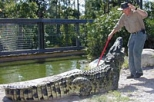 Gatorland® Trainer for a Day