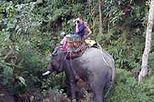 Elephant Adventure, Hilltribes and Mae Kok River Trip, Chieng Mai tours, north Thailand