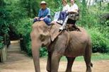 Elephant Trek, Rafting and Hilltribe from Chiang Mai, Thailand tour
