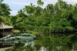 Kilas Wetland's River Safari, Sabah Tour