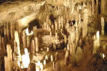 Natural Wonders of Barbados Tour including Harissons Cave