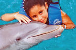 Cancun Dolphin Encounter Program