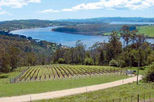 Launceston Afternoon Highlights Tour including Wine Tasting