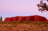 Best of Ayers Rock Sunset Uluru and Sunrise Kata Tjuta Small Group Tours