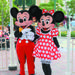 Already bought your tickets to Hong Kong Disneyland? Take the stress and uncertainty out of getting to the theme park by taking the easy way! Enjoy t