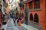 Historical Granada Sightseeing Tour